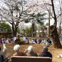機能訓練外出でお出掛けした『善福寺川公園』『お花見』