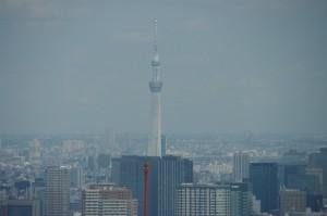 都庁の45階展望台