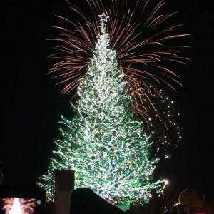 函館 クリスマスファンタジー