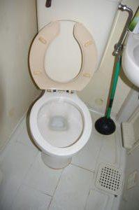杉っ子倶楽部 福祉クリーンサービス トイレ清掃実施後